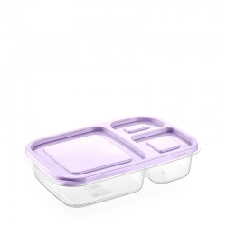 Lunch box Container